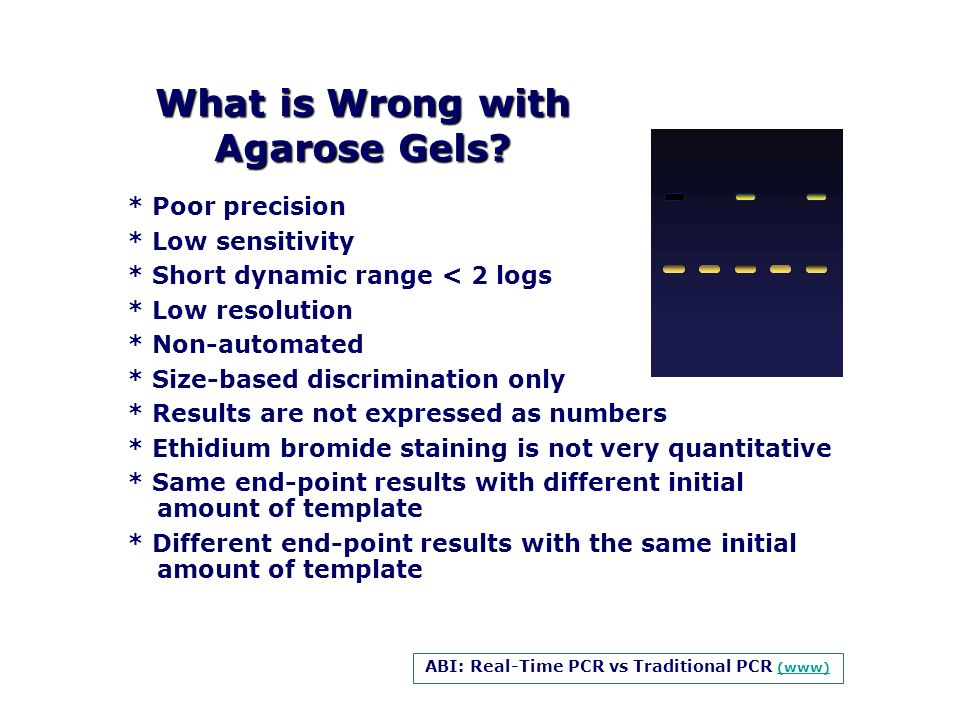 What is Wrong with Agarose Gels