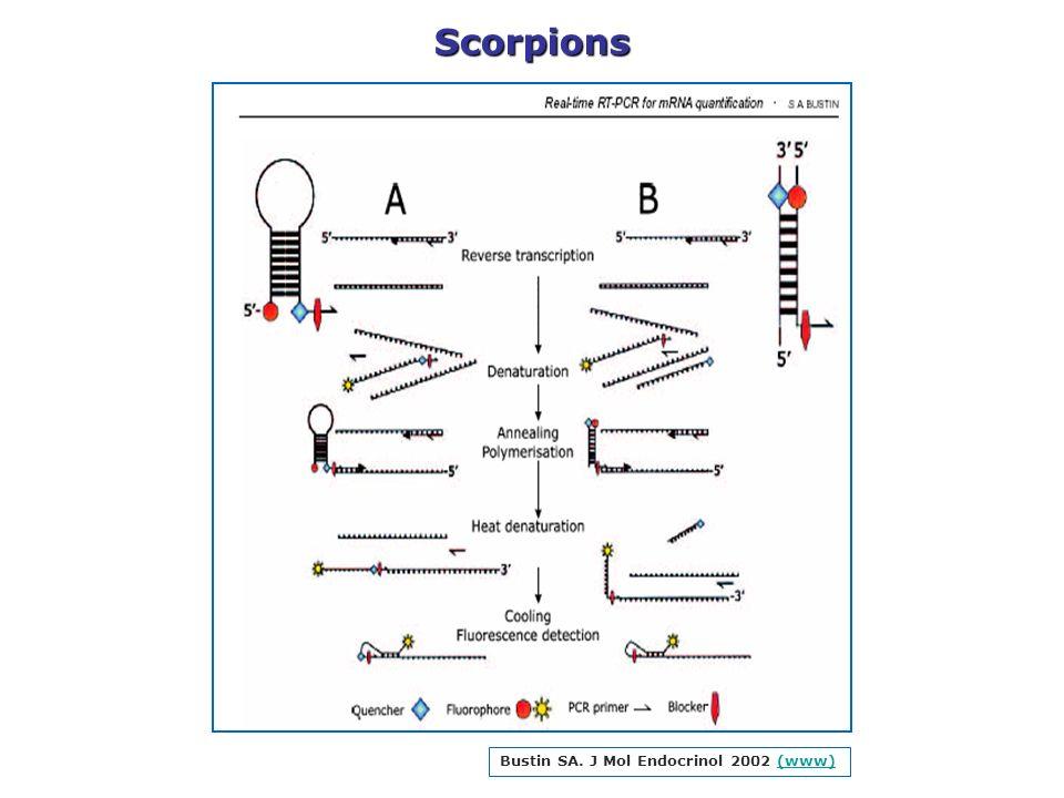 Scorpions Bustin SA. J Mol Endocrinol 2002 (www)