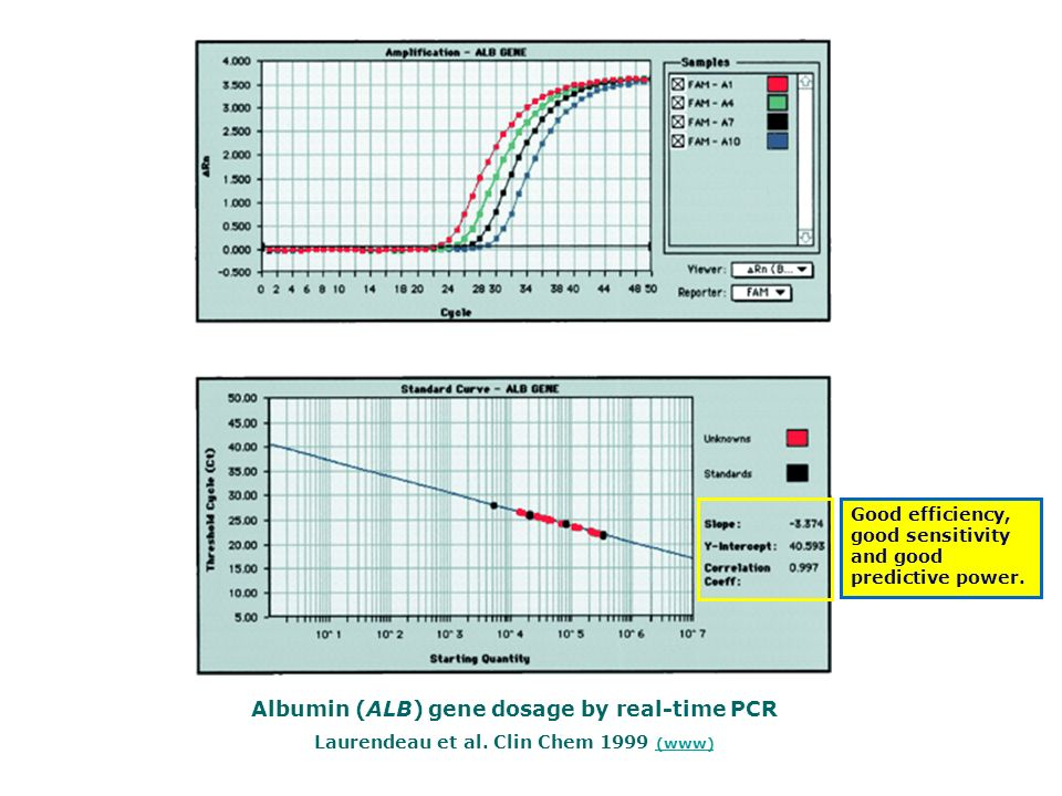 Albumin (ALB) gene dosage by real-time PCR