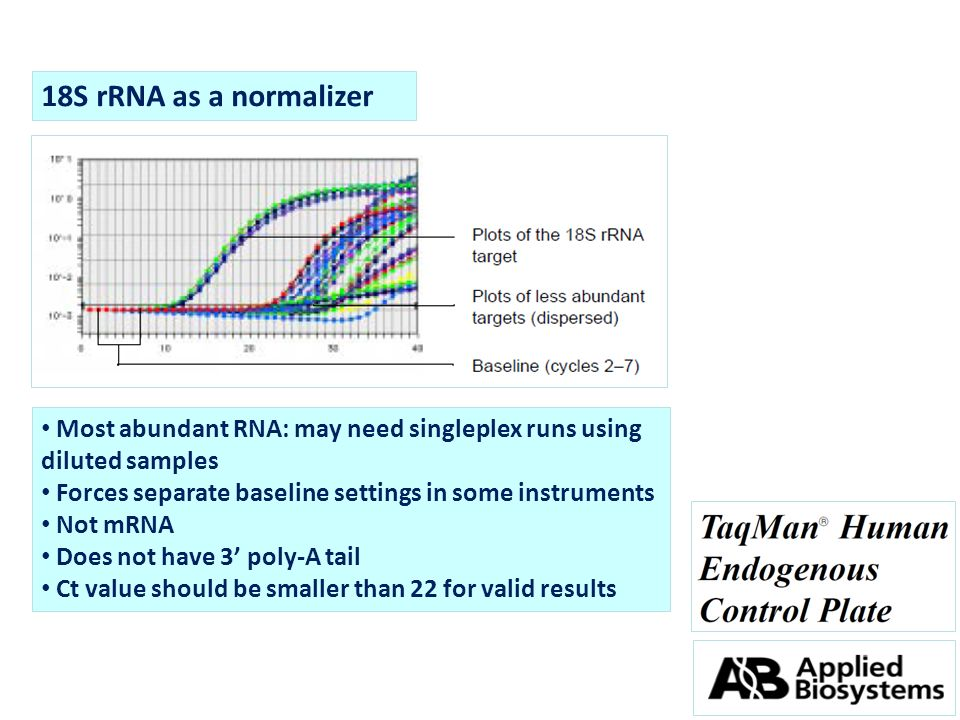 18S rRNA as a normalizer Most abundant RNA: may need singleplex runs using diluted samples. Forces separate baseline settings in some instruments.