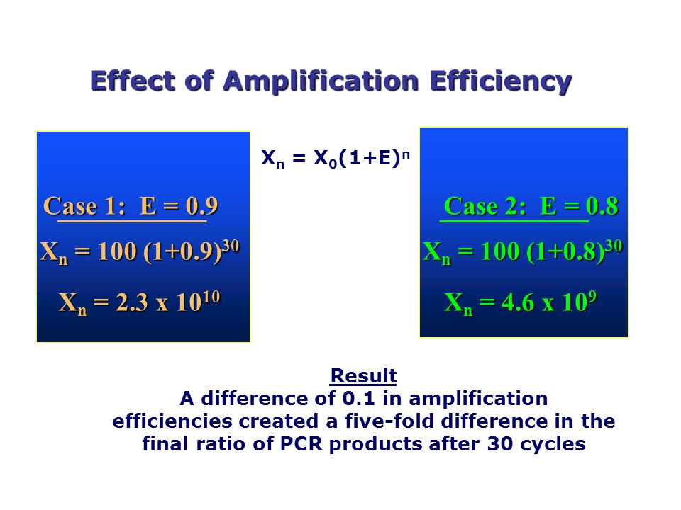 Effect of Amplification Efficiency