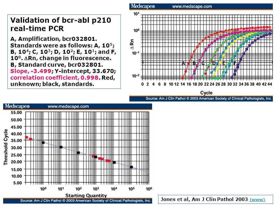 Validation of bcr-abl p210 real-time PCR
