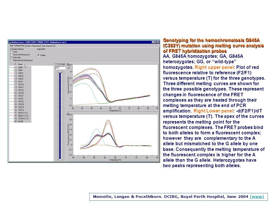Genotyping for the hemochromatosis G845A (C282Y) mutation using melting curve analysis of FRET hybridization probes