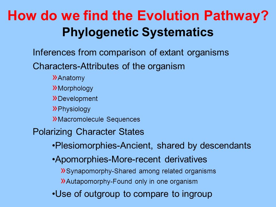 How do we find the Evolution Pathway