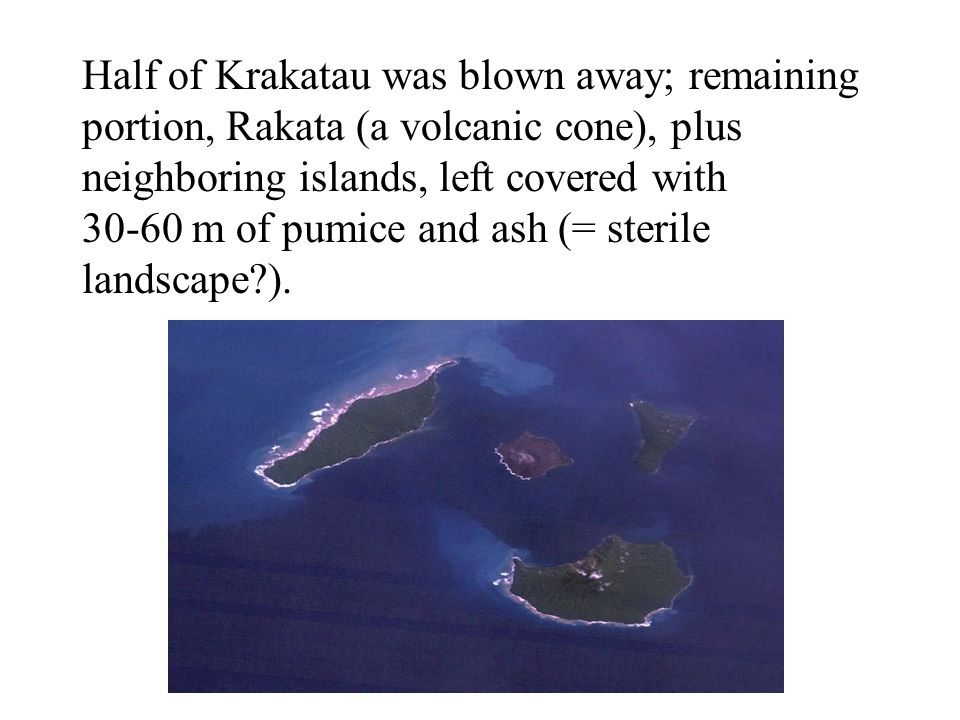 Half of Krakatau was blown away; remaining portion, Rakata (a volcanic cone), plus neighboring islands, left covered with 30-60 m of pumice and ash (= sterile landscape ).
