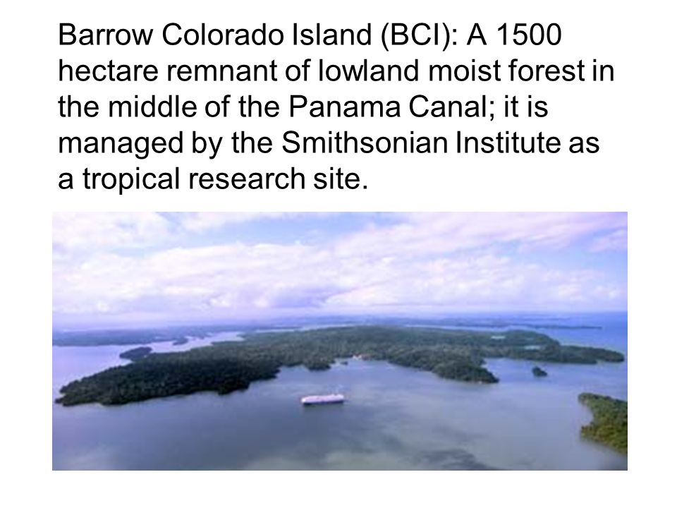 Barrow Colorado Island (BCI): A 1500 hectare remnant of lowland moist forest in the middle of the Panama Canal; it is managed by the Smithsonian Institute as a tropical research site.