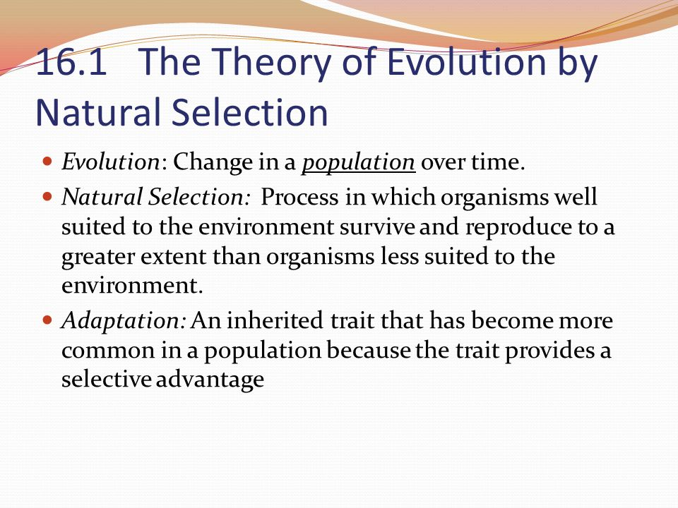 16.1 The Theory of Evolution by Natural Selection