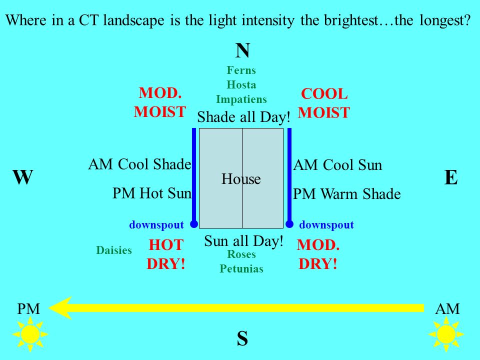 Where in a CT landscape is the light intensity the brightest…the longest