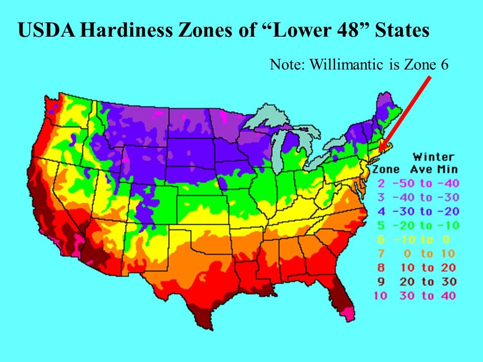 USDA Hardiness Zones of Lower 48 States