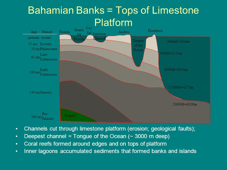 Bahamian Banks = Tops of Limestone Platform