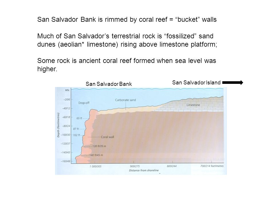 San Salvador Bank is rimmed by coral reef = bucket walls