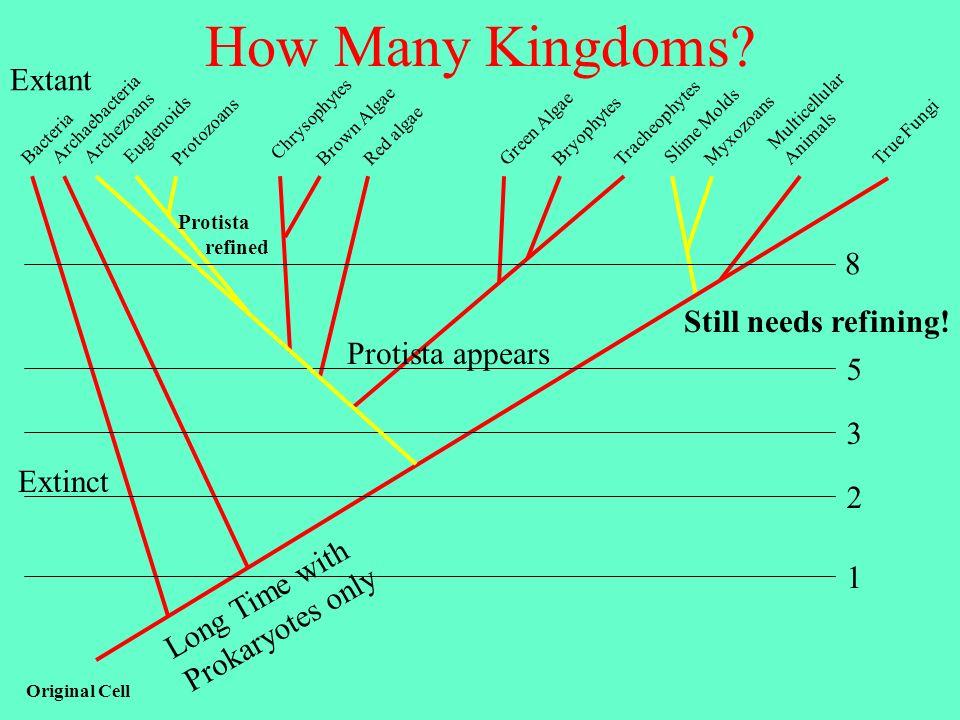 How Many Kingdoms Extant 8 Still needs refining! Protista appears 5 3