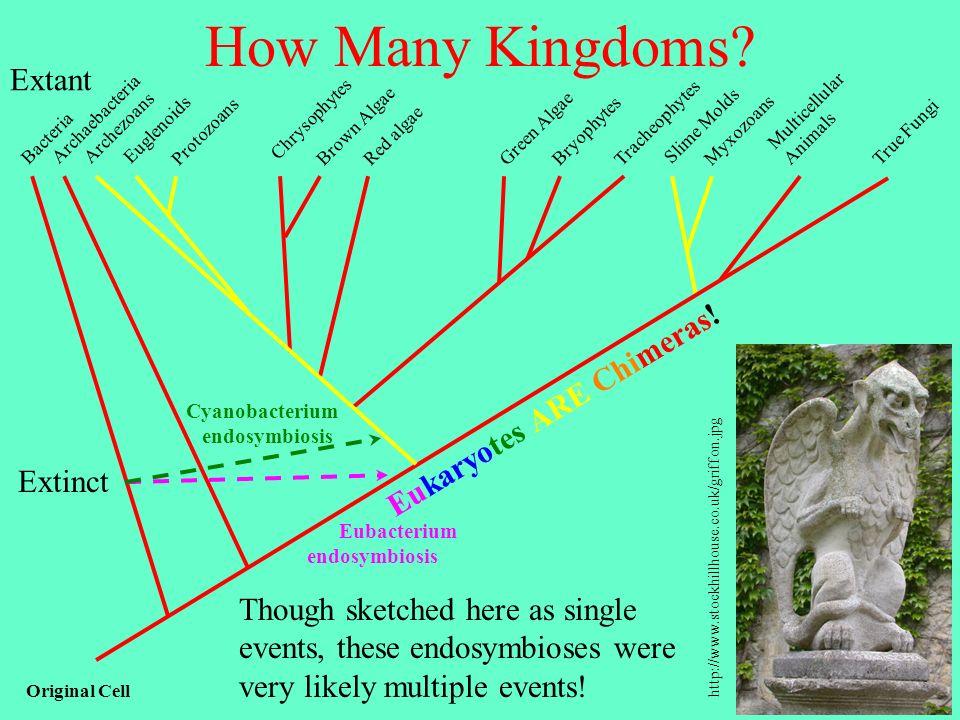 How Many Kingdoms Extant Eukaryotes ARE Chimeras! Extinct