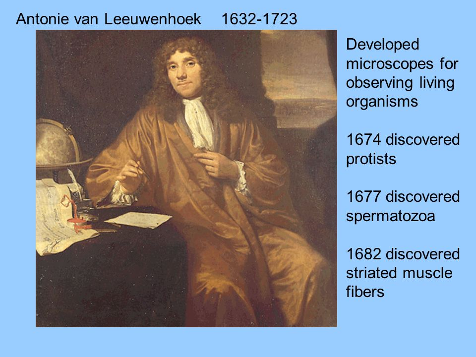 Antonie van Leeuwenhoek - ppt download