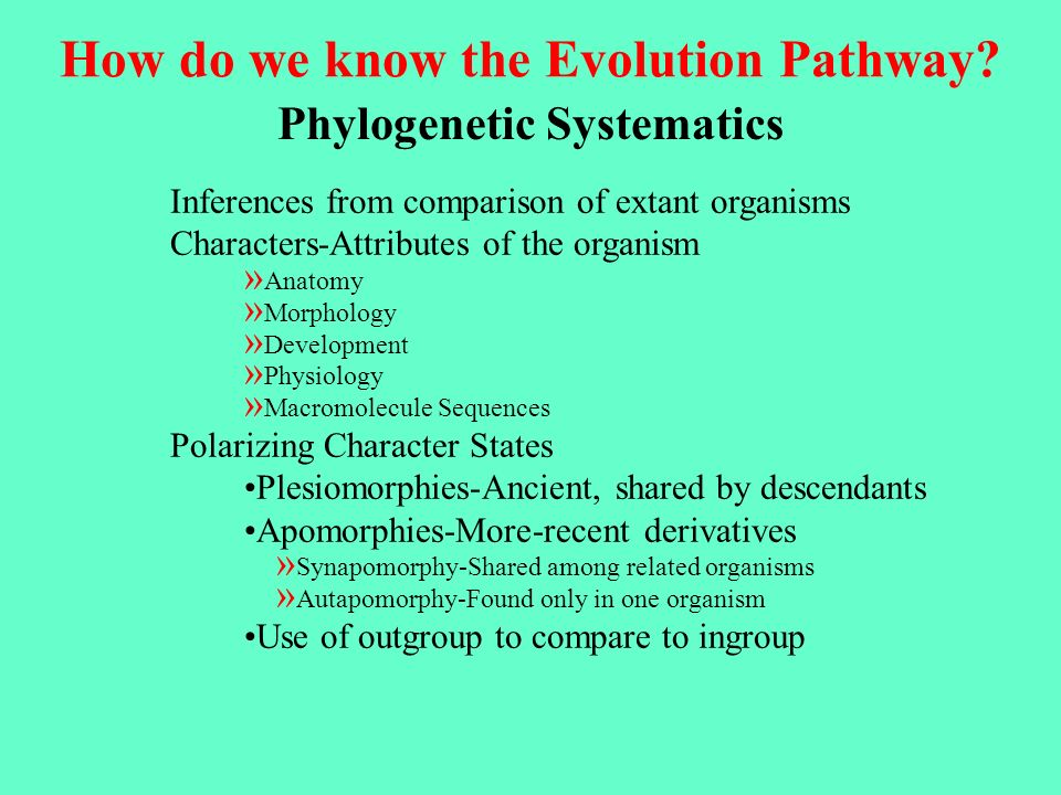 How do we know the Evolution Pathway