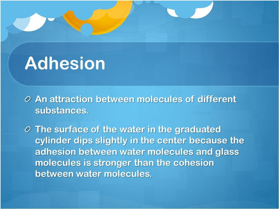 Adhesion An attraction between molecules of different substances.