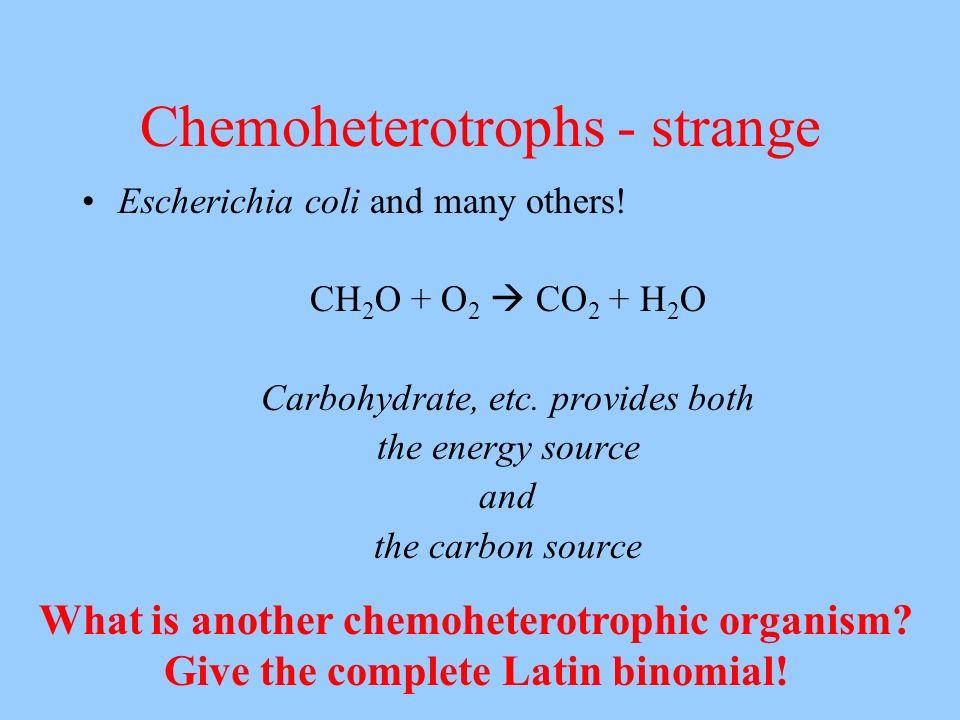 Chemoheterotrophs - strange