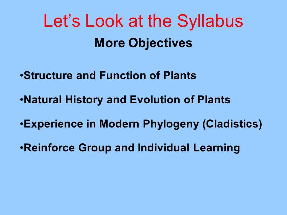 Let's Look at the Syllabus