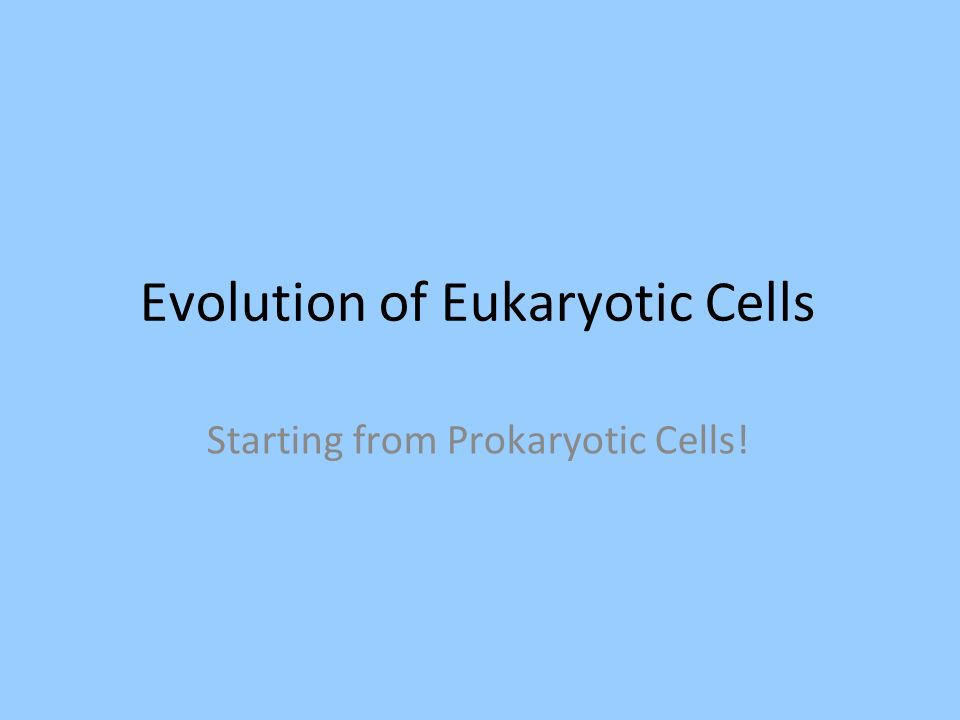Evolution of Eukaryotic Cells