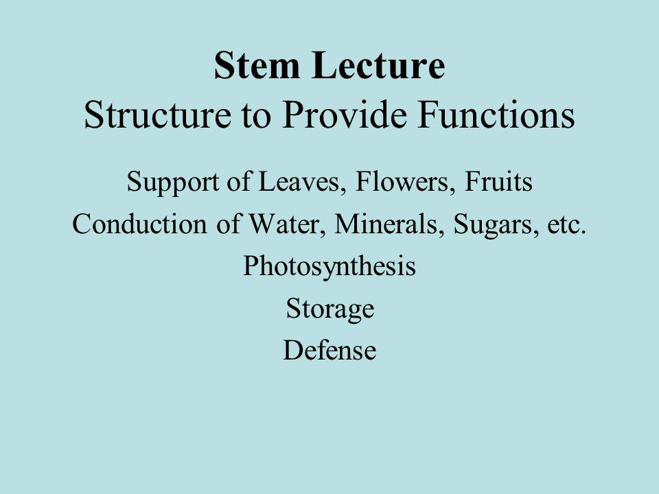 Structure to Provide Functions