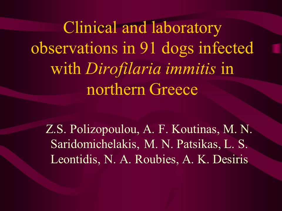 Clinical and laboratory observations in 91 dogs infected with Dirofilaria immitis in northern Greece