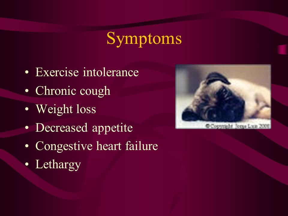 Symptoms Exercise intolerance Chronic cough Weight loss