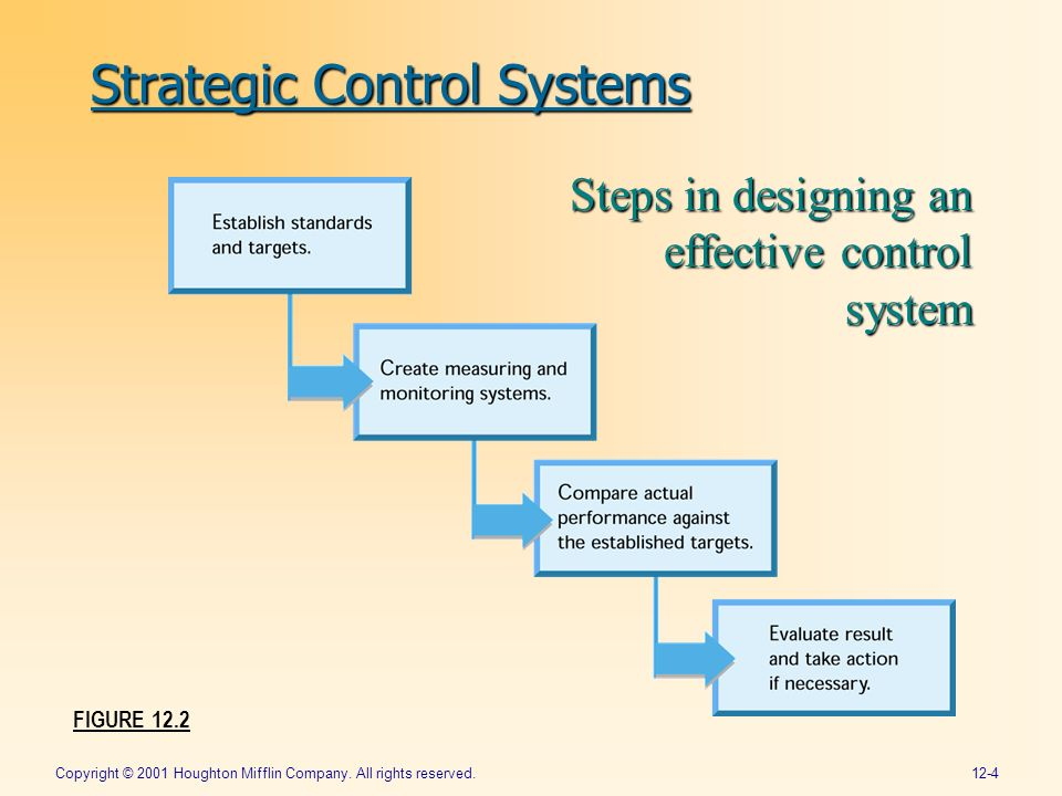strategic control financial control and strategic Difference between financial objectives and strategic objectives: in financial objectives an organisation only plans for the financial issues of the business these objectives only covers how much money needs to invest in the company to achieve the required target.