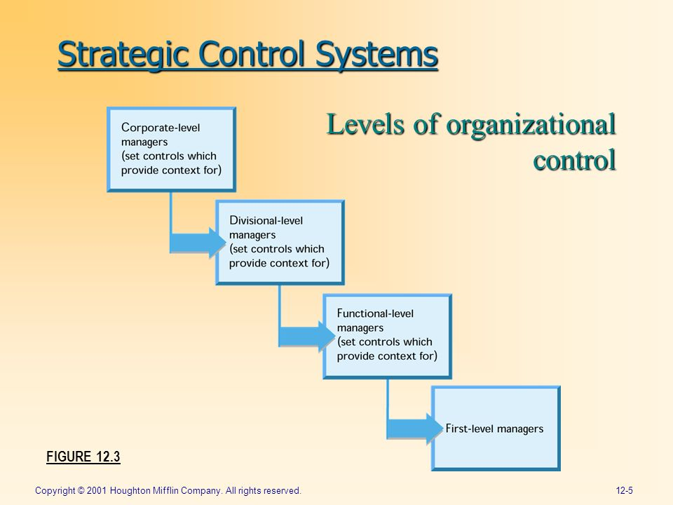 organization structure and control system Organizational structure at management systems, we have a unique approach to organizational structure that focuses on three distinct, yet related levels: macro structure – the boxes on an organization chart and how they are arranged.