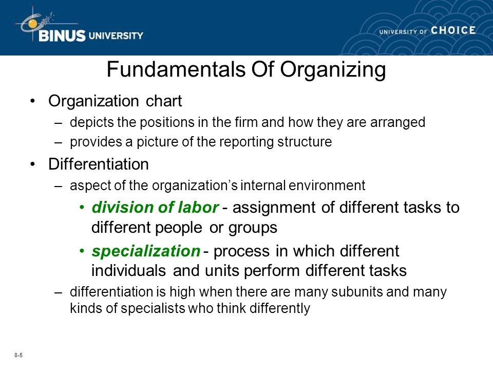 different fundamental of organizing chart: Session 6 organizational structure ppt video online download