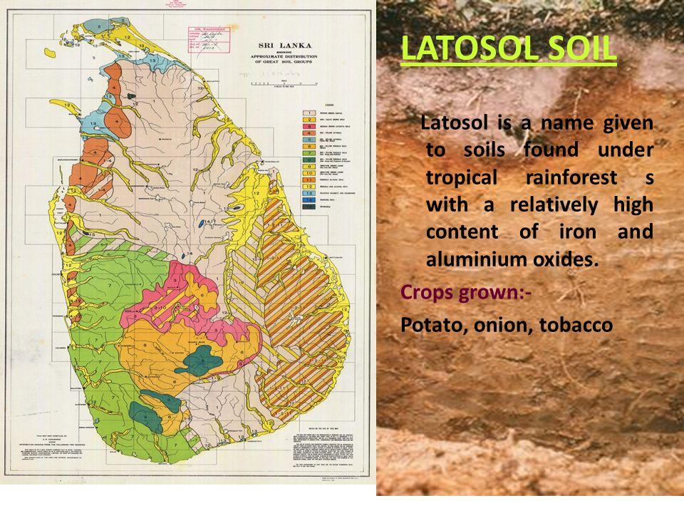 Soils of sri lanka ppt video online download for Where is soil found