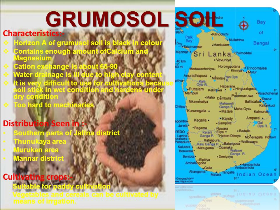 Soils of sri lanka ppt video online download for What are soil characteristics