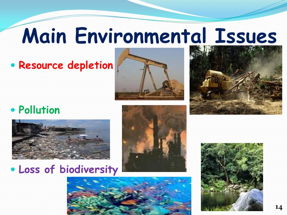 how pollution destroys the atmosphere and habitats essay The physiological effects of pollution essay sample  if pollution destroys the vegetation which is the primary producer of food it will lead to the death of other .