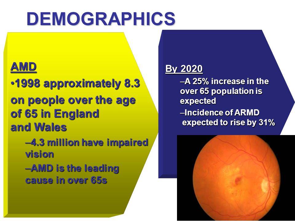 DEMOGRAPHICS AMD 1998 approximately 8.3