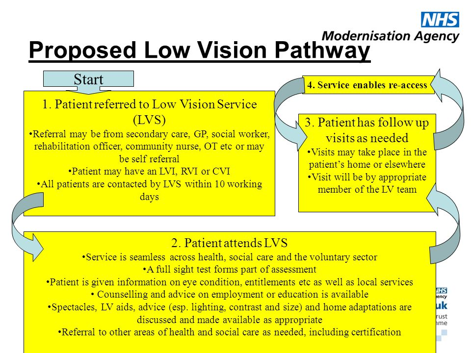 Proposed Low Vision Pathway