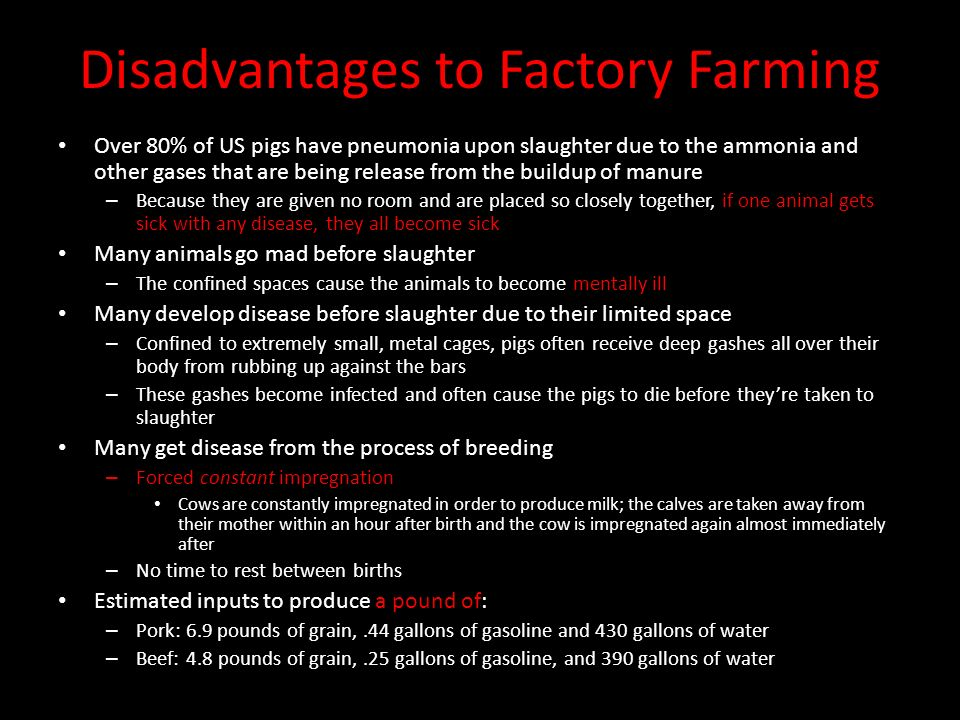 factory farming disadvantages Eating, raising and domesticating livestock for survival has been taking place since the very beginning of human existence since history began, nomadic settlers began grazing sheep, goats and other native species in order to live off of their resources.