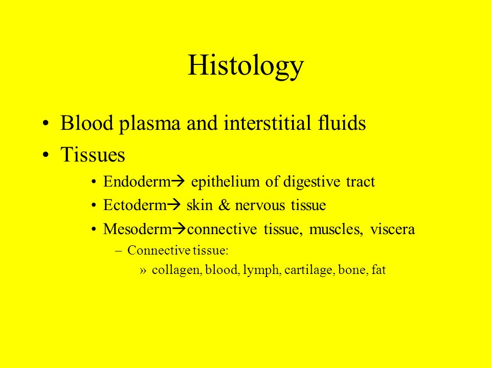 Histology Blood plasma and interstitial fluids Tissues