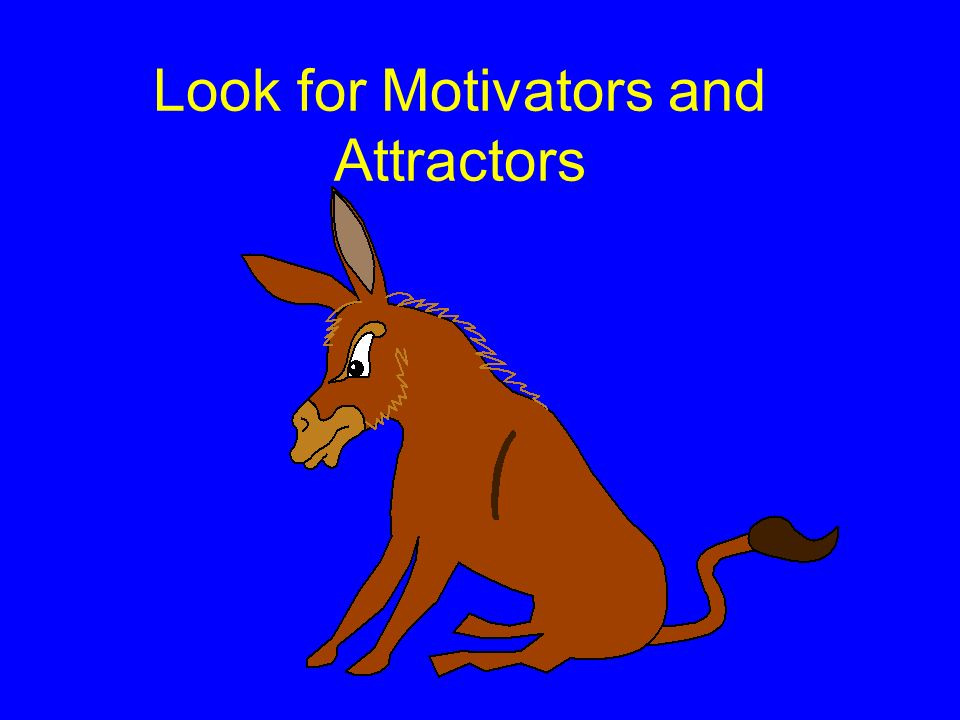 Look for Motivators and Attractors