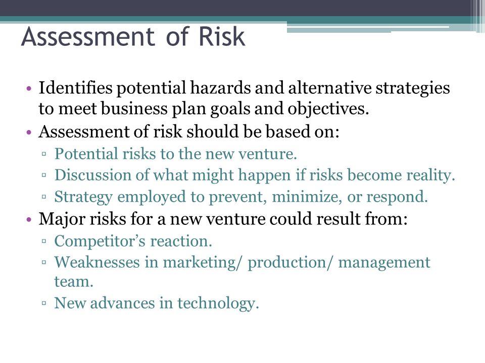 Risk Assessment Business Plan