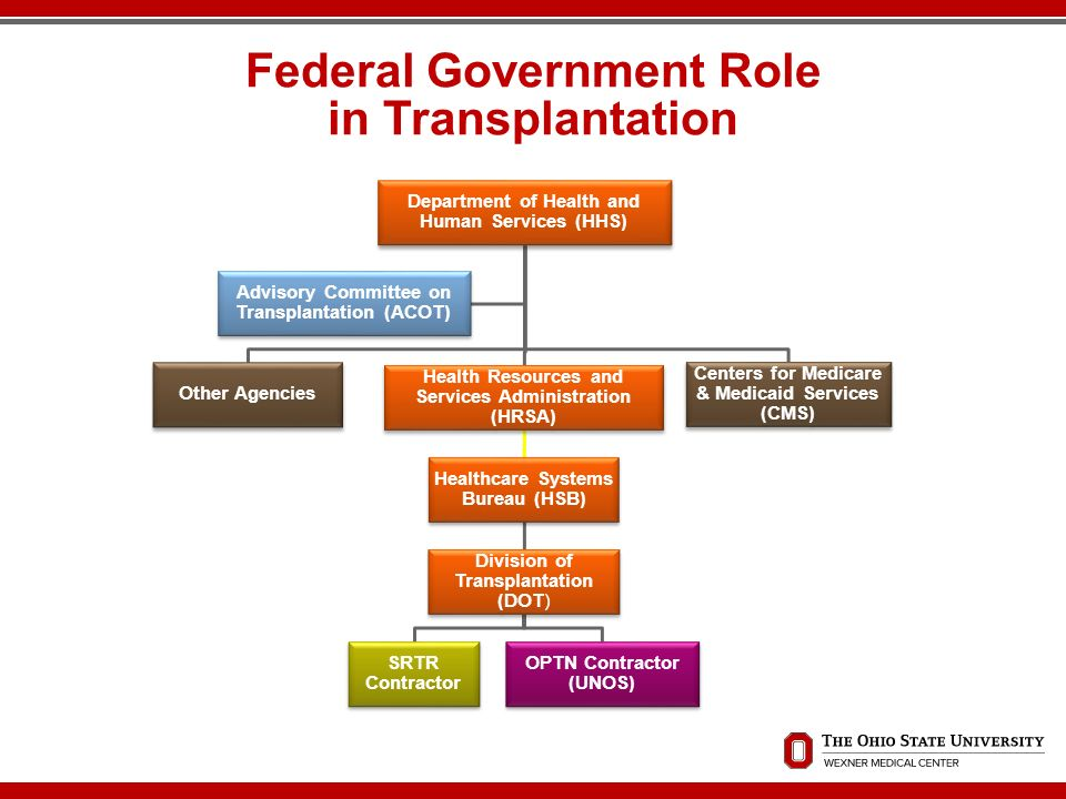 What is the federal government's role in health care?
