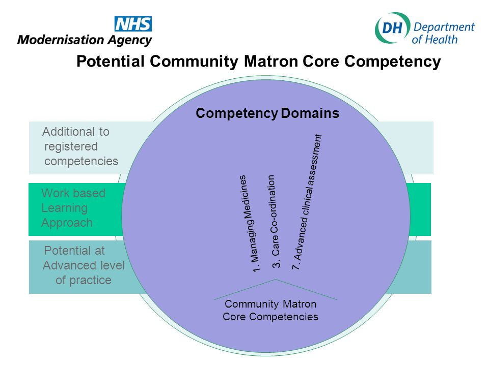 Potential Community Matron Core Competency