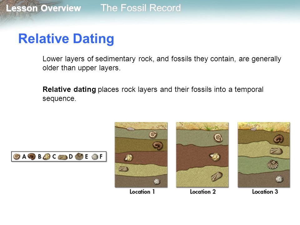 Relative and Absolute Dating Techniques | Earth Science