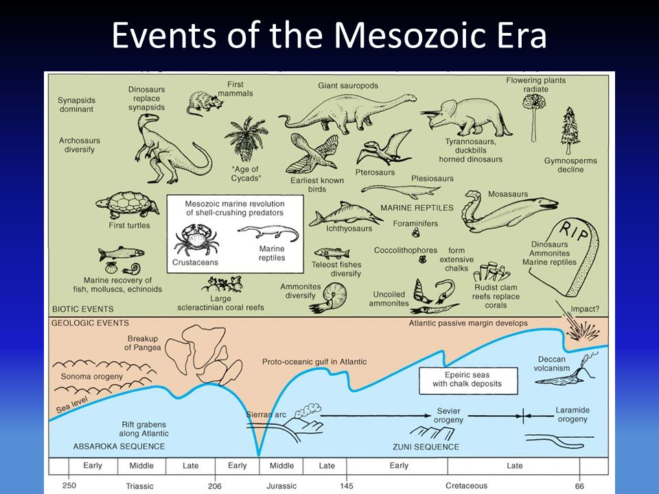 the earth during the mesozoic era or the age of dinosaurs