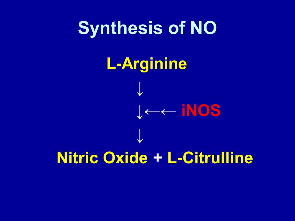 1 Larginine Supplement  Official Site Larginine Plus