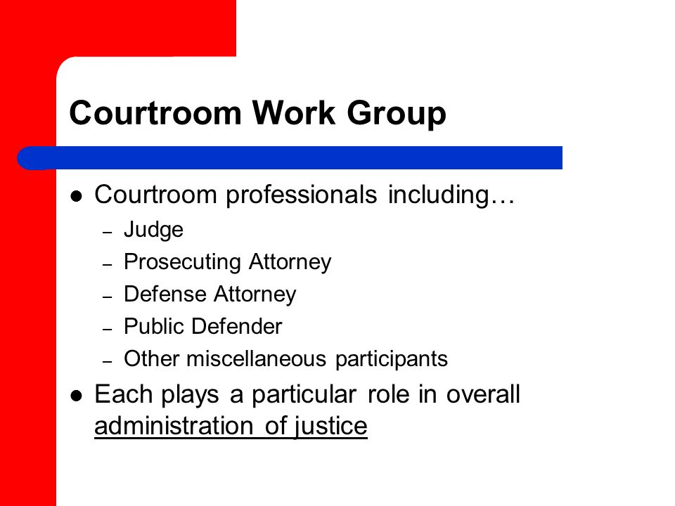 Courtroom Work Group Courtroom professionals including…