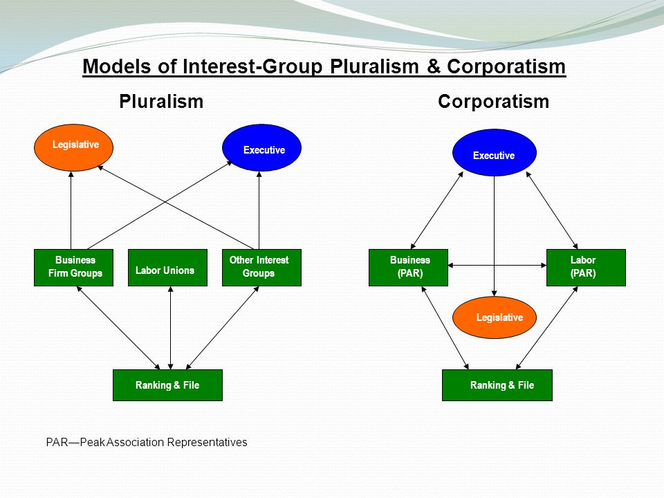 pluralism and policy making in new Despite america's pluralistic, fragmented, and generally adversarial political   combative policy arena to propose a new model for regulation, pluralism by the   in policymaking is inevitable, pluralism by the rules establishes a theoretical.