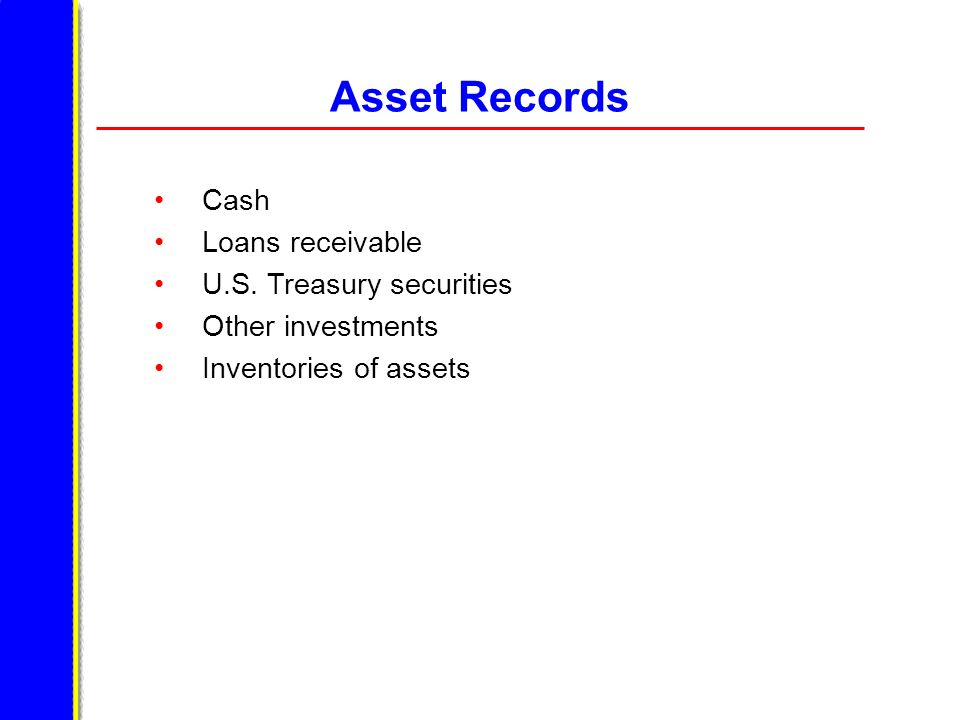 Asset Records Cash Loans receivable U.S. Treasury securities