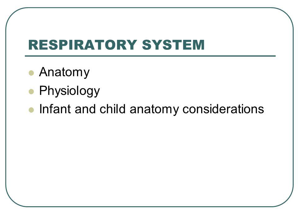 RESPIRATORY SYSTEM Anatomy Physiology