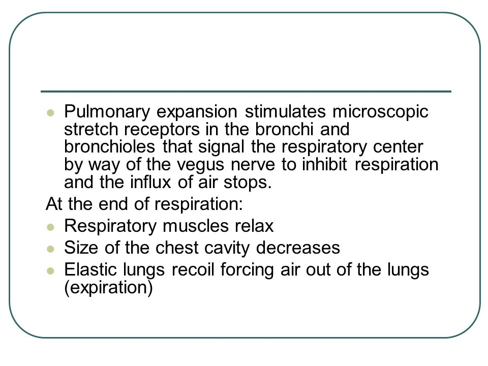 Pulmonary expansion stimulates microscopic stretch receptors in the bronchi and bronchioles that signal the respiratory center by way of the vegus nerve to inhibit respiration and the influx of air stops.