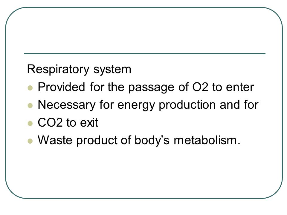 Respiratory system Provided for the passage of O2 to enter. Necessary for energy production and for.