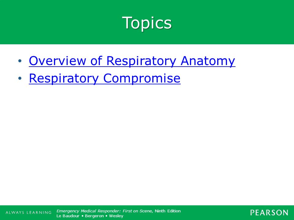 Topics Overview of Respiratory Anatomy Respiratory Compromise